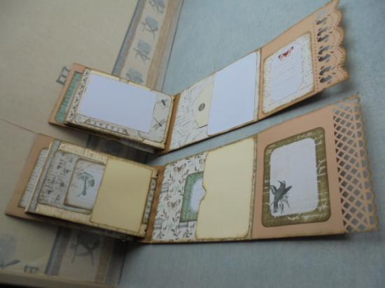 Albums cabinet de curiosité (5)